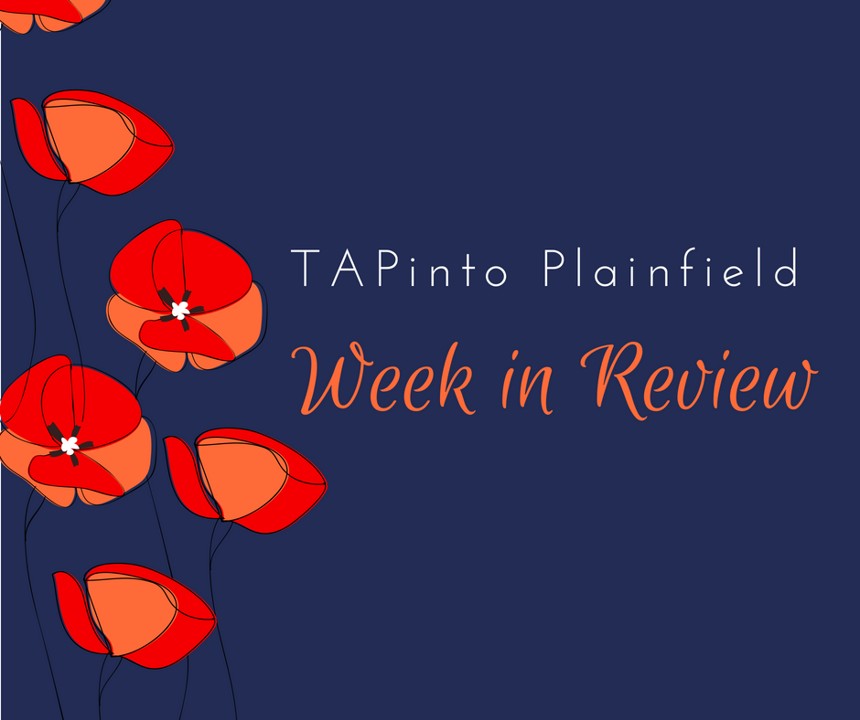 66d4323e84a7ce15cd04_Week_in_Review_poppies.jpg