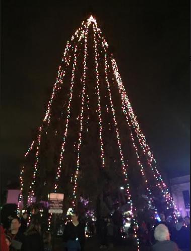 678ee5c035e9c3f94746_tree.jpg