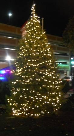 6ebb2141ec780e2a7aec_midtown_tree_lighting_2.jpg