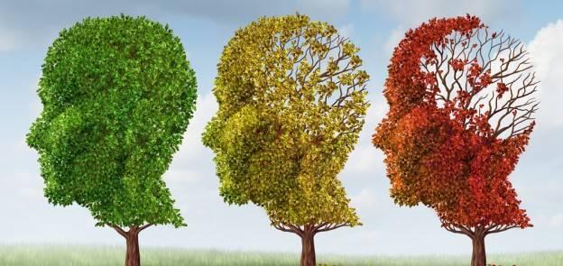 727070119c8bf7a86828_Alzheimers.jpg