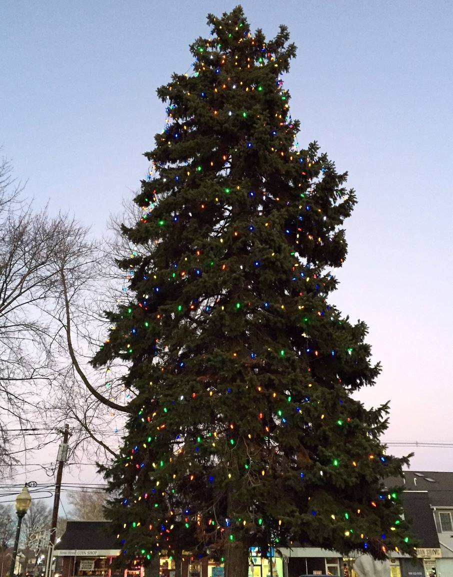 Scotch plains annual holiday celebration scheduled for dec 4 news