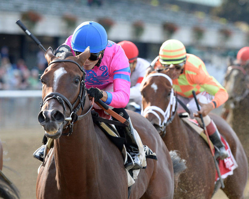 80acaf6d79ee4ecbb243_La_Verdad_racing.jpg