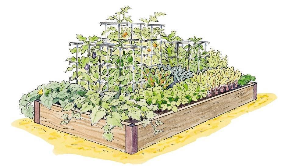 84965894c06db57304a0_High_Yield_Garden_Plan_photo_credit_Gardeners_Supply_Company.jpg