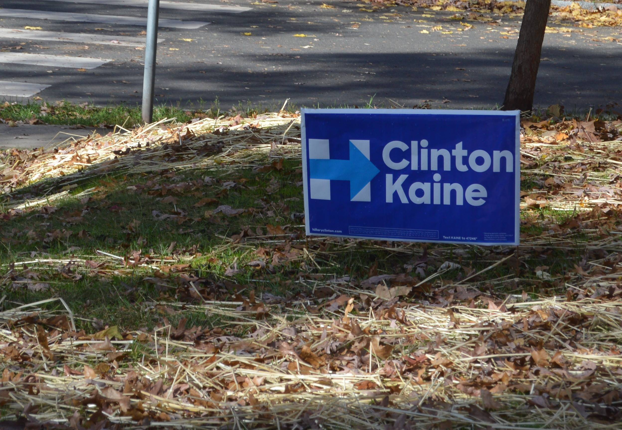 84c35420586474c1c9fe_98df1a950a0869483269_Sign_Hillary.JPG
