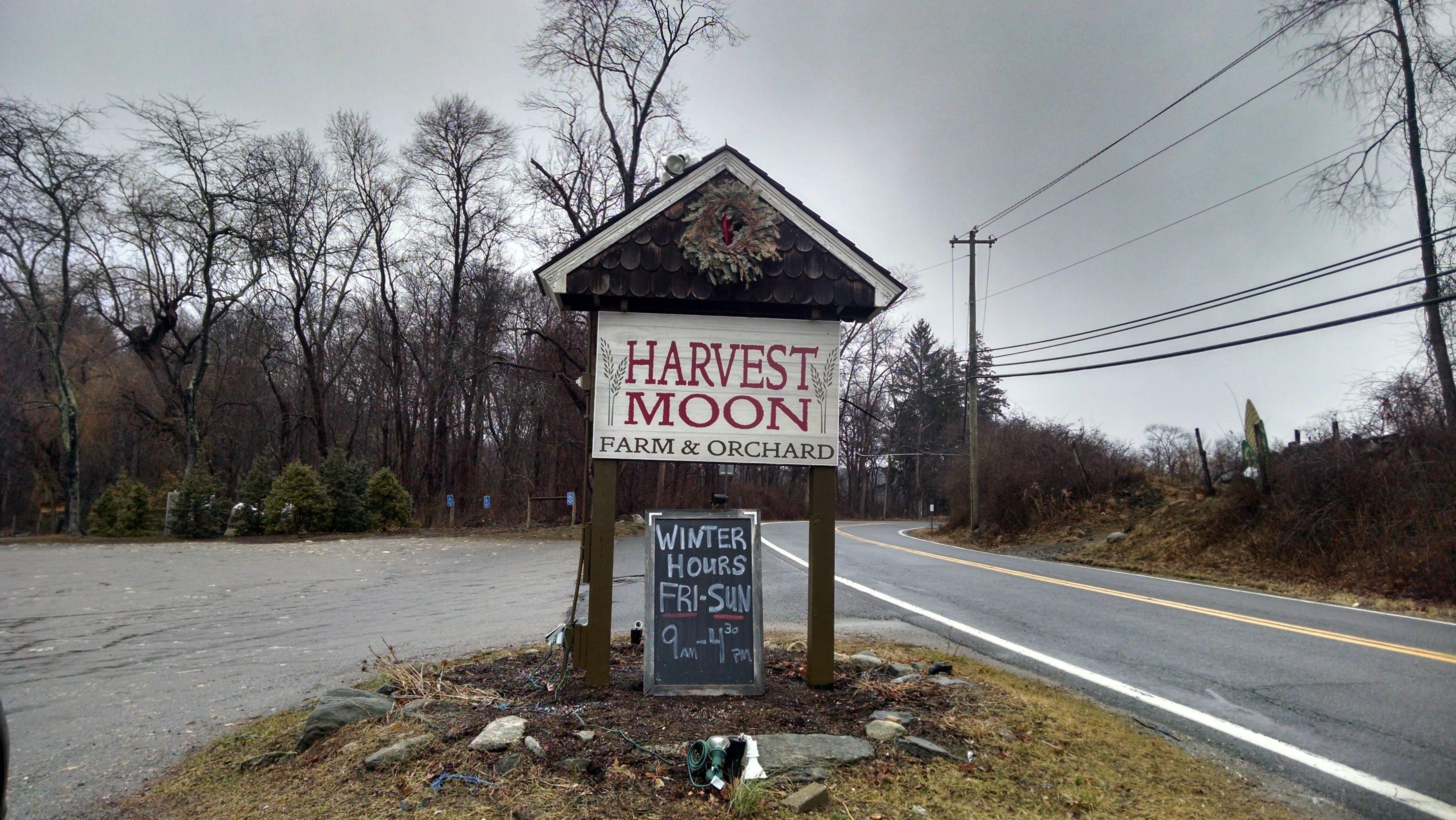 85b877e884a098a1983c_harvest_moon_sign.jpg