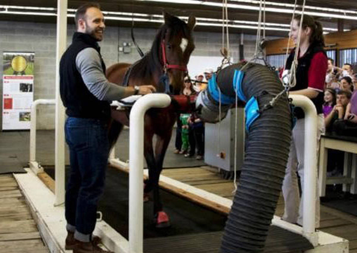 Rutgers Equine Science Center Annual Summer Showcase Scheduled for ...