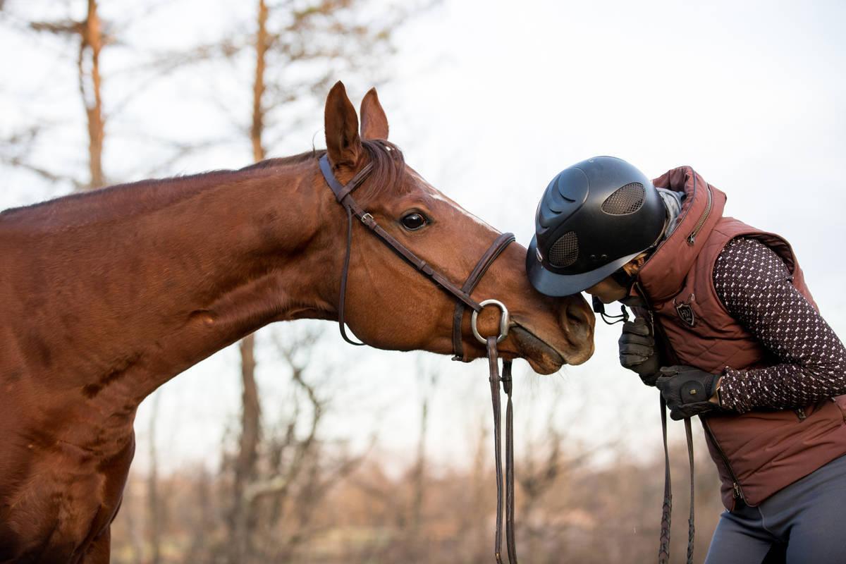 9238b66f19302b732130_Tracey_Buyce_Horse_Photography-10.JPG
