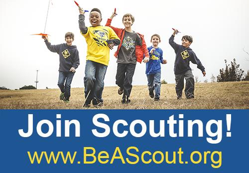 923af8e7dc85b25c56cf_Join-Scouting-banner-4.jpg