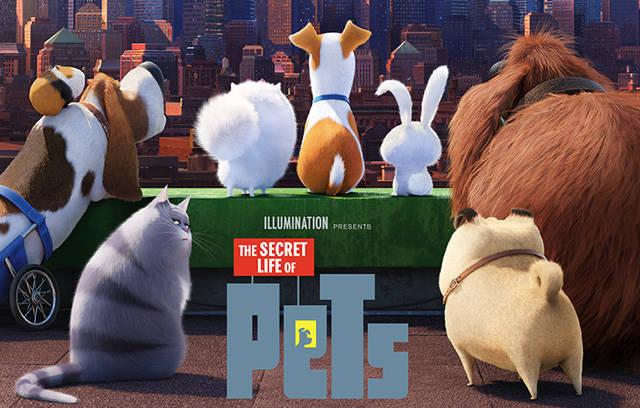 97cd217f612b64794af4_Secret_Life_Of_Pets_a.jpg