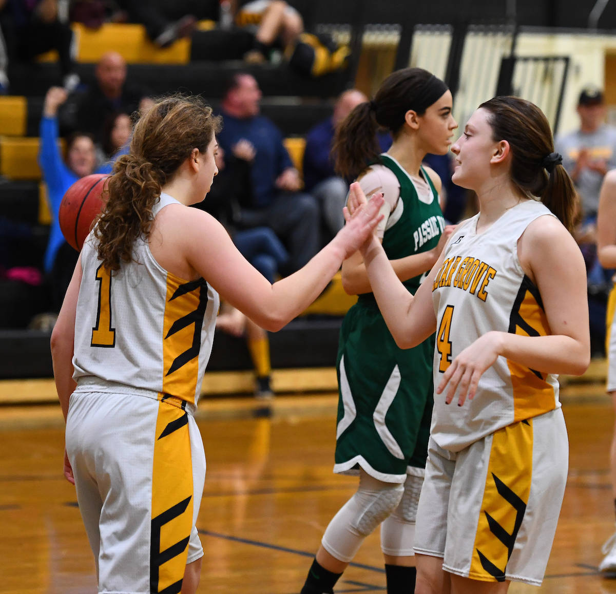 valley grove girls Great valley kennett octorara  unionville ended archbishop carroll's one-year reign as piaa class aaa girls  tweets by @chesmontsports ches-mont news.
