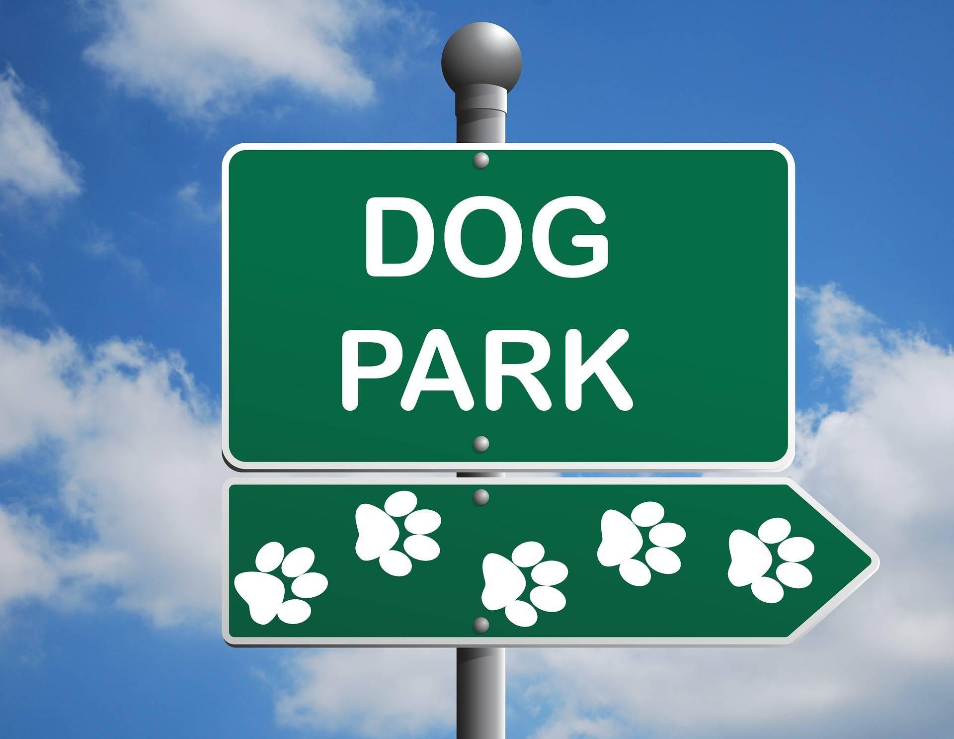 9ac7e676a5b6f40fa4ed_dog-park-1497655_1920.jpg