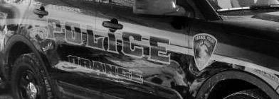 a8f02c57e4c563230e09_Orange_Police_.jpg