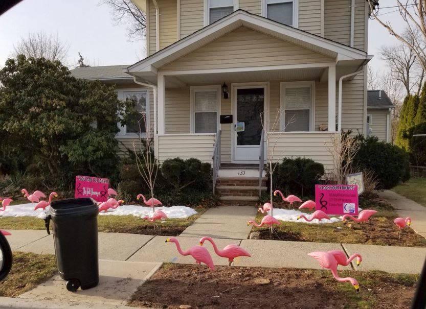 a9213a1704b54895abea_Pink_Flamingos_135_Lakeside_Drive_2018.JPG