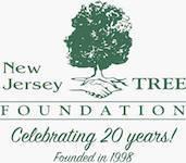addd0eaa5cb5cbdd83aa_NJ_Tree_Image.jpg
