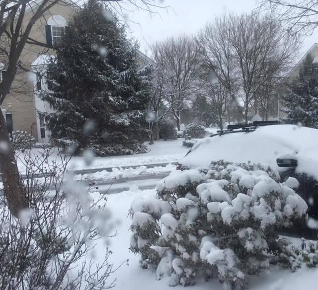 af22a52ab89203dee03e_SNOWday2.9.17.jpg