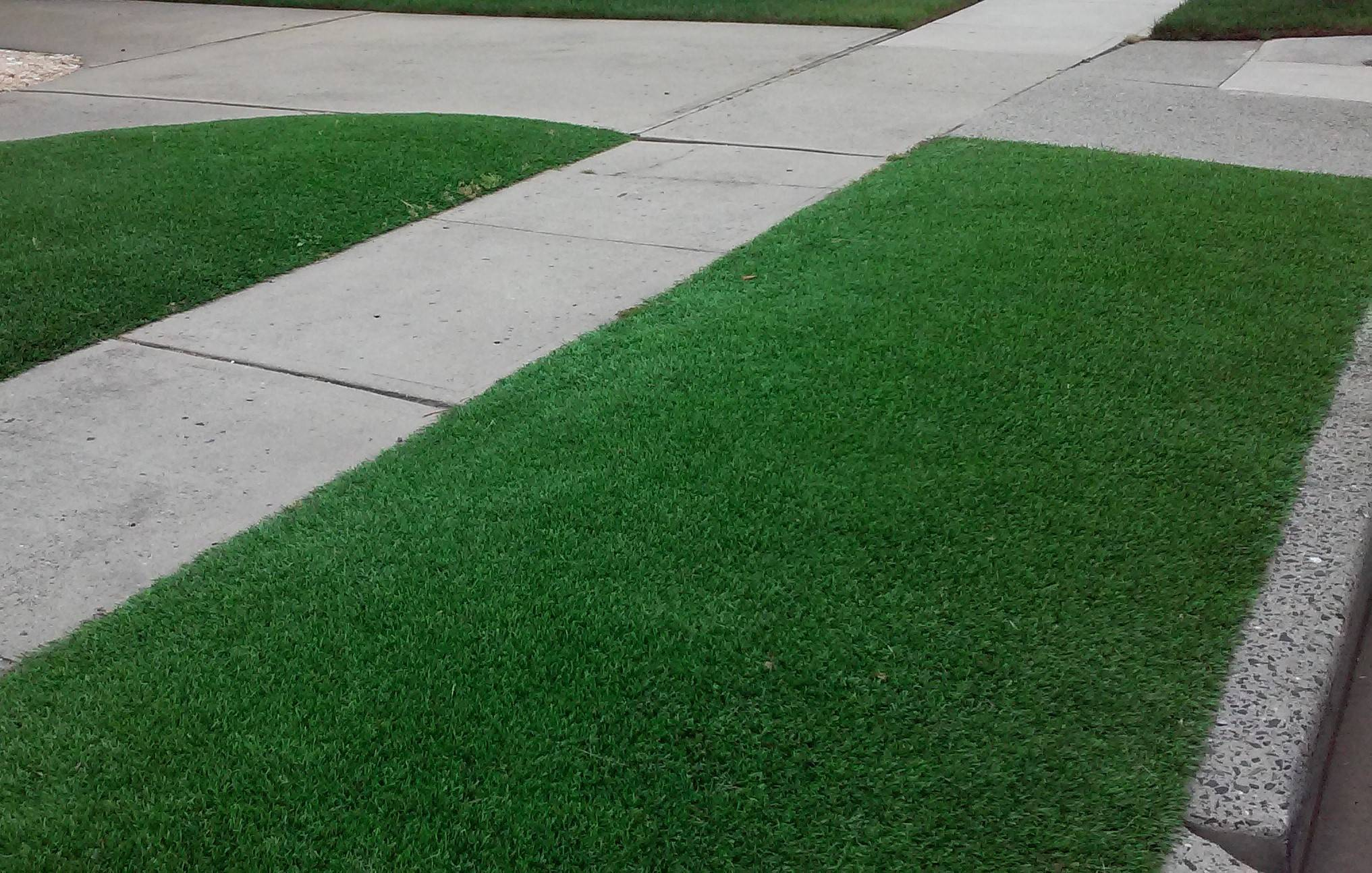 belmar bans fake grass on front lawns restricts use on side yards