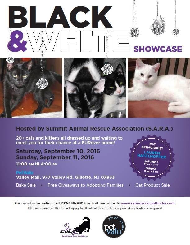 b6e1848d34c1f57f2c0a_Black_and_white_showcase.jpg