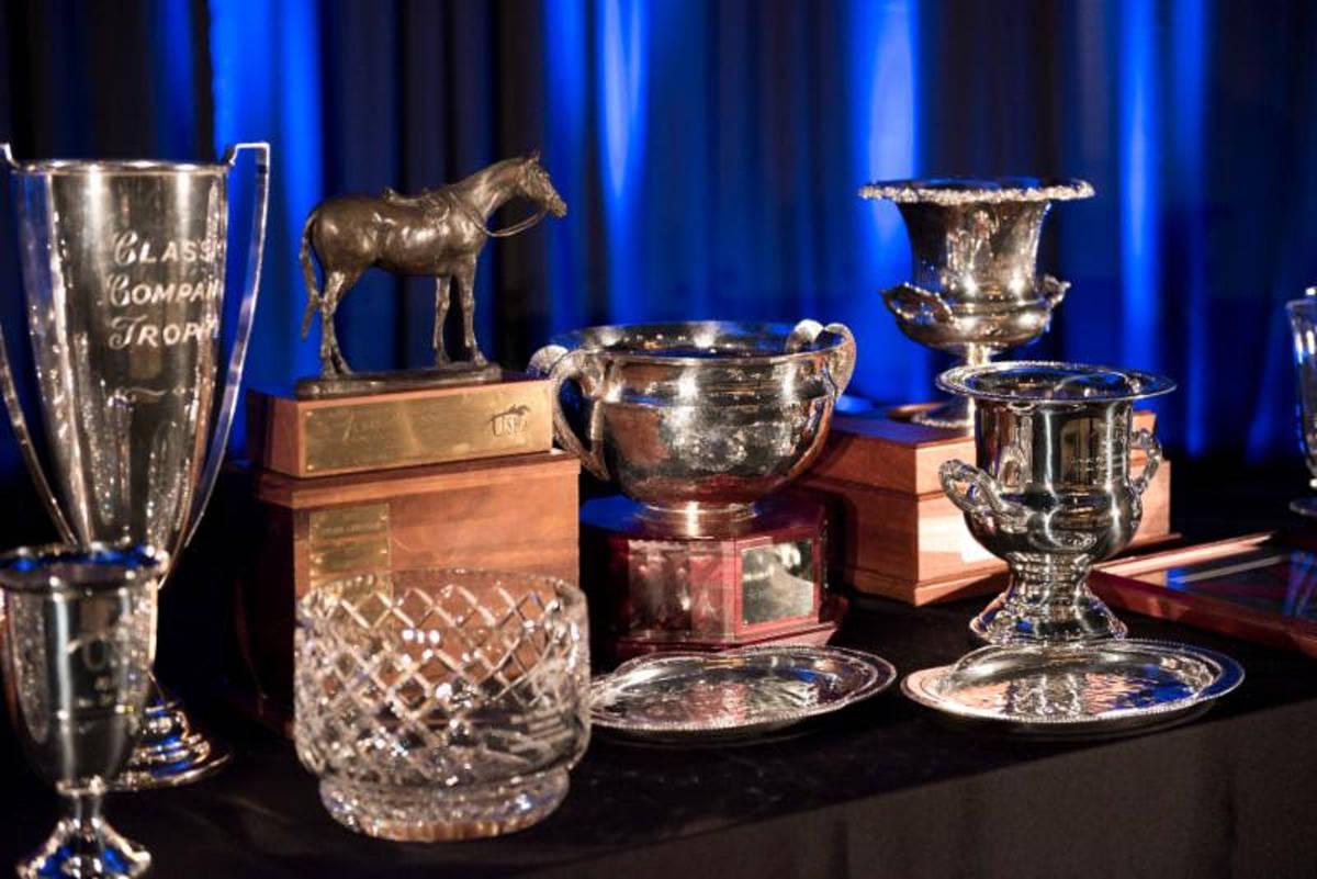 b8513089612543063b50_ushja_awards.JPG
