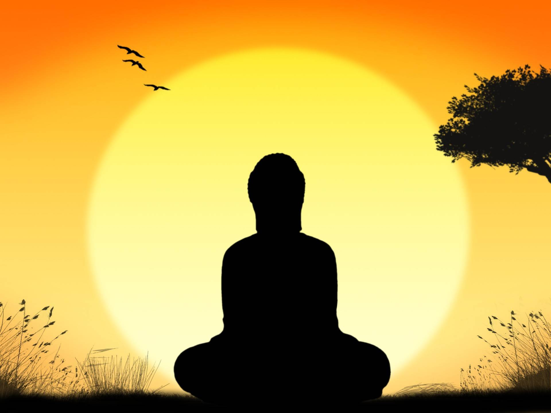 ba4457f296adc45dc602_meditation-1395091315fOg.jpg