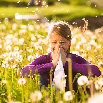 ba925f041dcbed3b3c02_allergy-s1-facts.jpg
