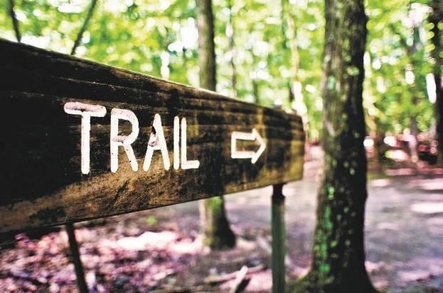 bbe473b9224971ed4e1d_trail.jpg