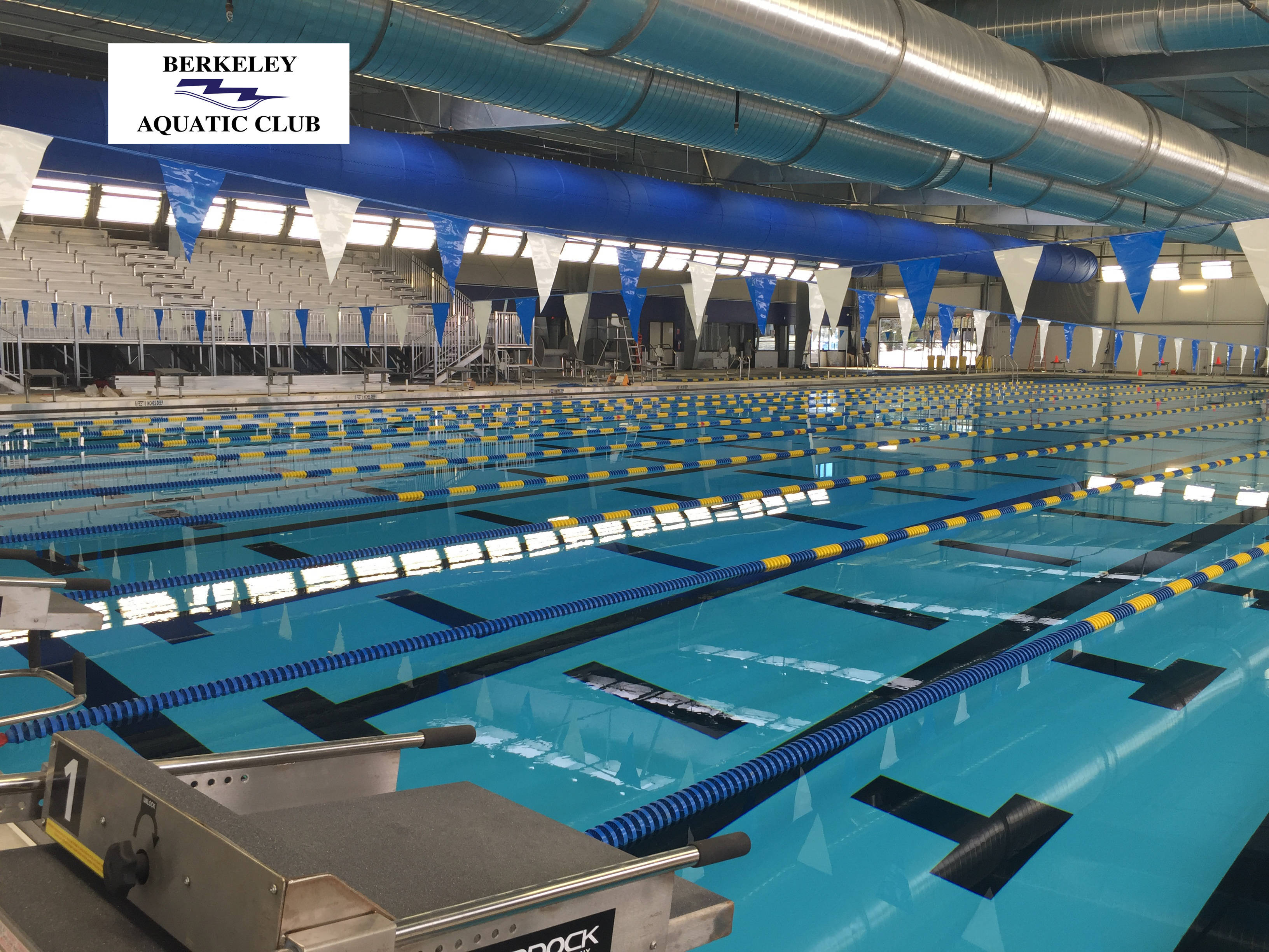 Berkeley aquatic club announces upcoming swim team tryouts for 2017 18 season new providence for Brooklyn college swimming pool membership
