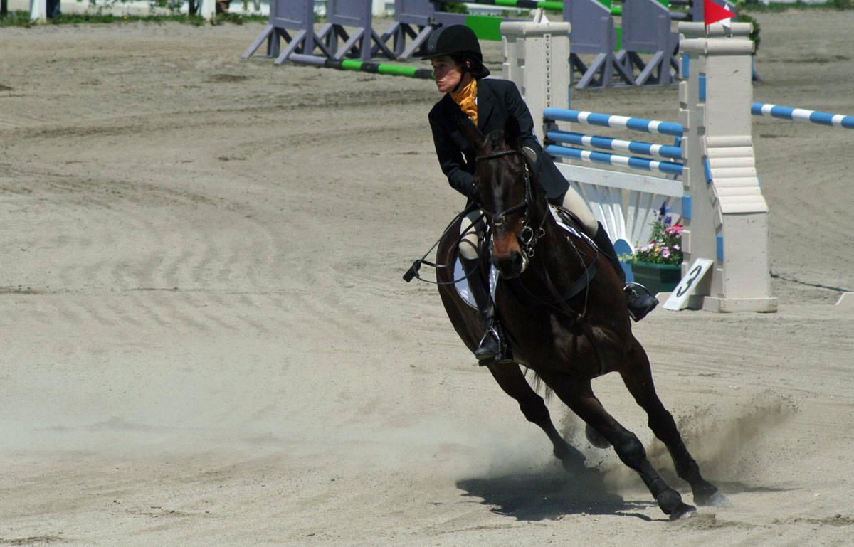 c325c79f1939c0a8a8ef_horse_park_footing.jpg
