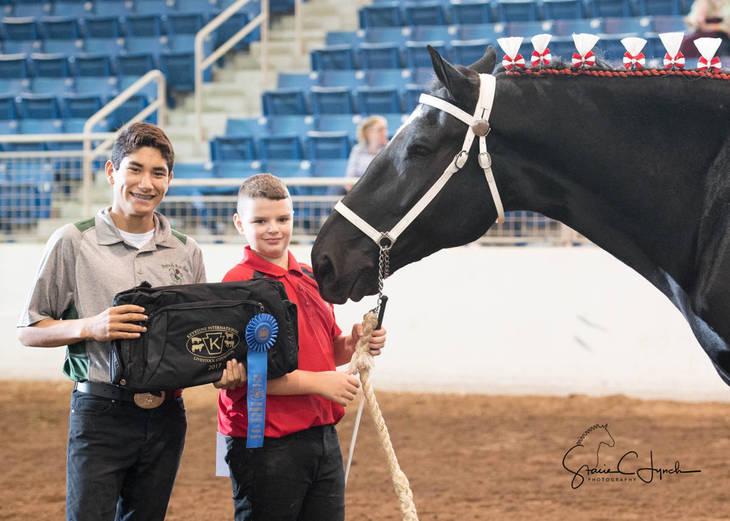 00e7e0e7dad30e243afd_Keystone_International_Draft_Horses184.JPG