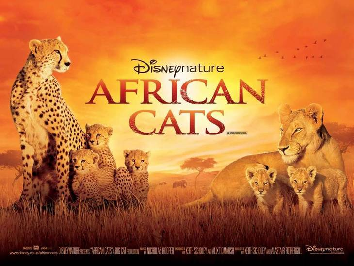 03609ab2353e15265dee_Movie_Disney_Nature_African_Cats.jpg