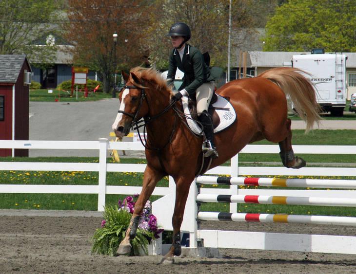 05fb9bd8db94866998bd_Garden_Stat101e_Horse_Show_18_By_Lillian_Shupe.JPG