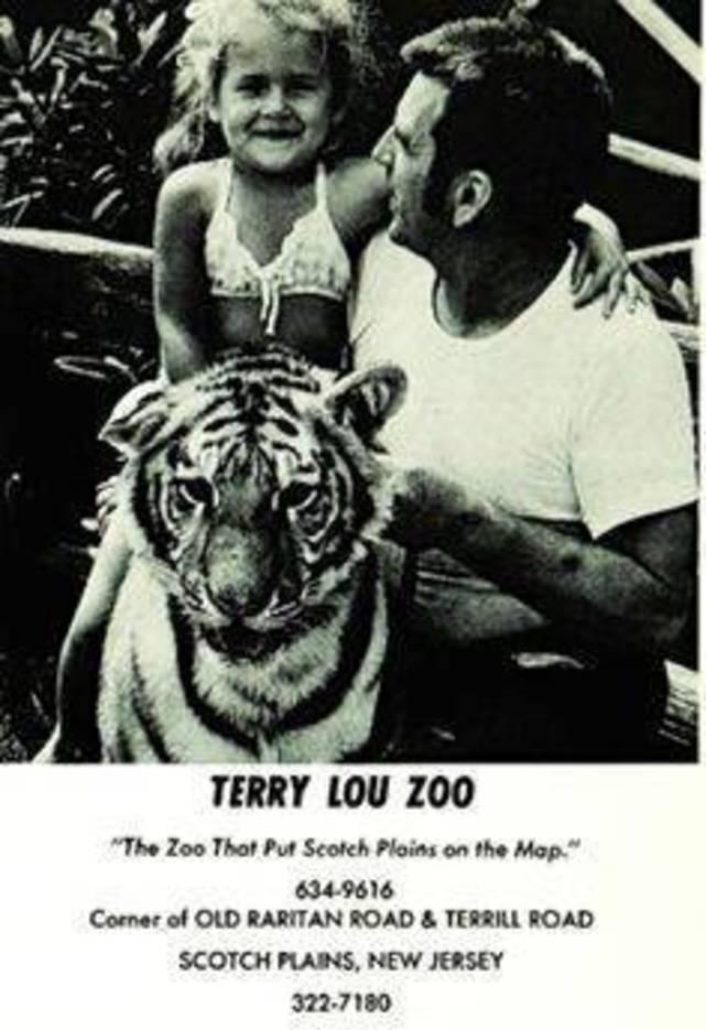 06a8d2063e7ebf72c2fa_Terrylou_Zoo_Vintage_ad.jpg