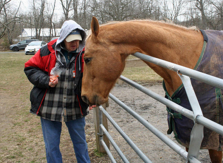 0730e1df39645ce754cc_Therapy_horse_honored04.JPG