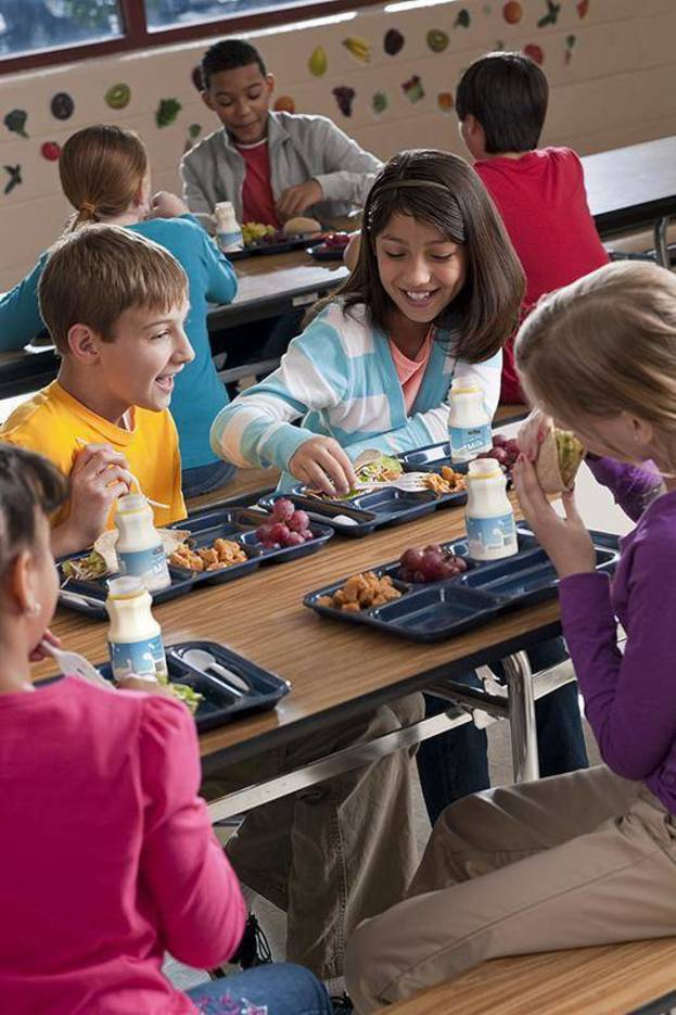good nutrition and students school performance Nutrition and student performance at school howard taras abstract: this article reviews research from published studies on the association between nutrition among school-aged children.
