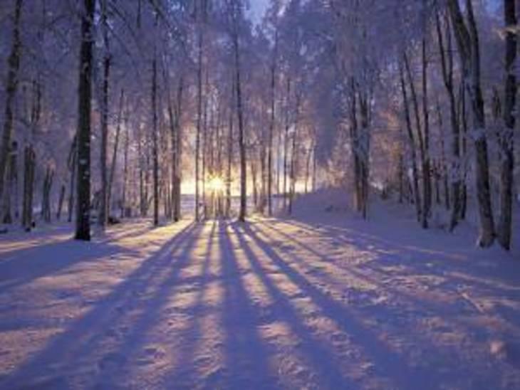10c2d82a54c59f6be10c_winterscene.jpg