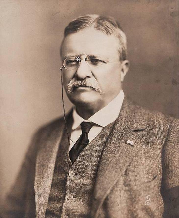 14b9450c5ea5d8986811_Theodore_Roosevelt__public_domain_.jpg
