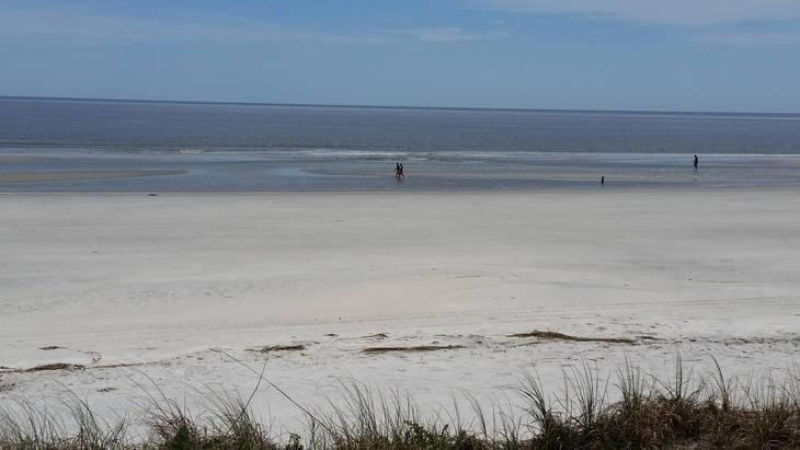 19cbbab4c85c02667d0d_South_End_Beach.jpg