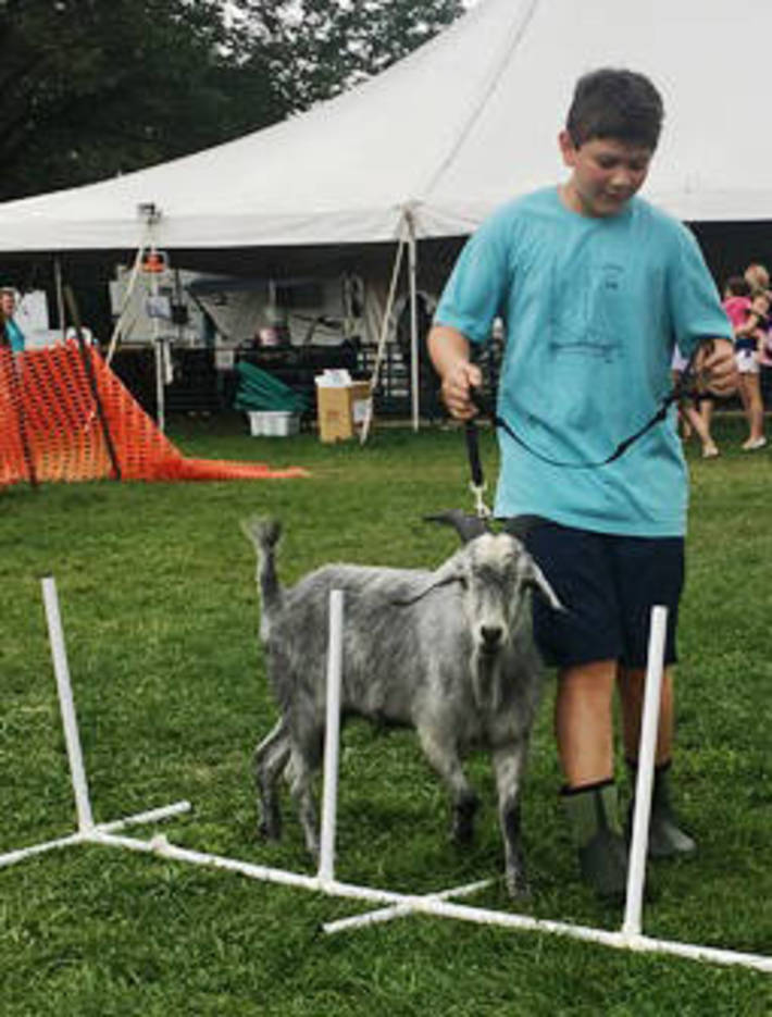 1c3adeff5bc13481e7a4_1707_4H_boy_and_goat.jpg