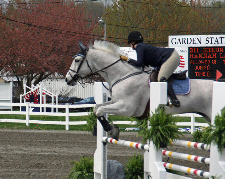 1df0ea5669e3835afda3_Garden_Stat96e_Horse_Show_18_By_Lillian_Shupe.JPG