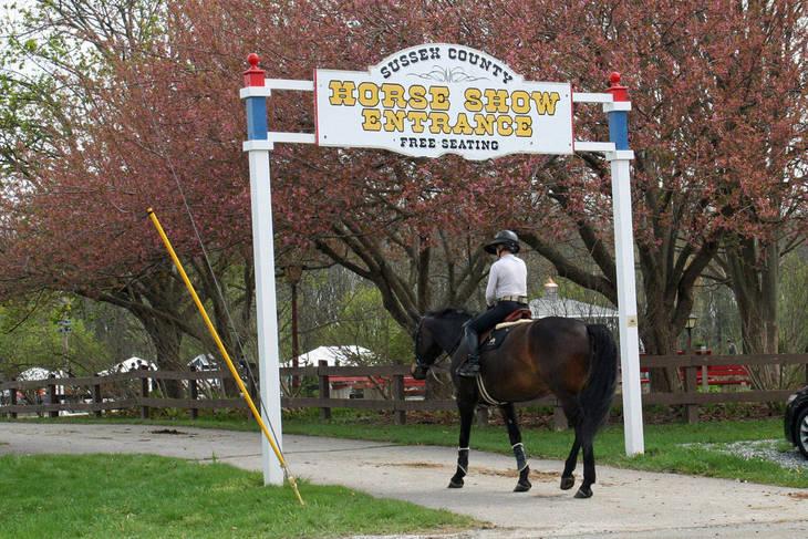1f2841659693c165aa67_Garden_Stat85e_Horse_Show_18_By_Lillian_Shupe.JPG