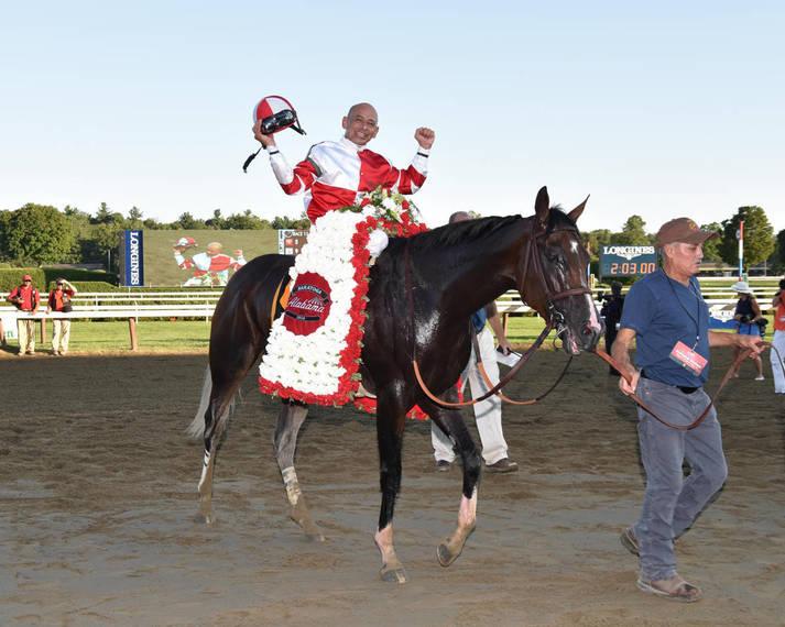 22f7da784474d2af2d18_Songbird_the_racehorse078.JPG