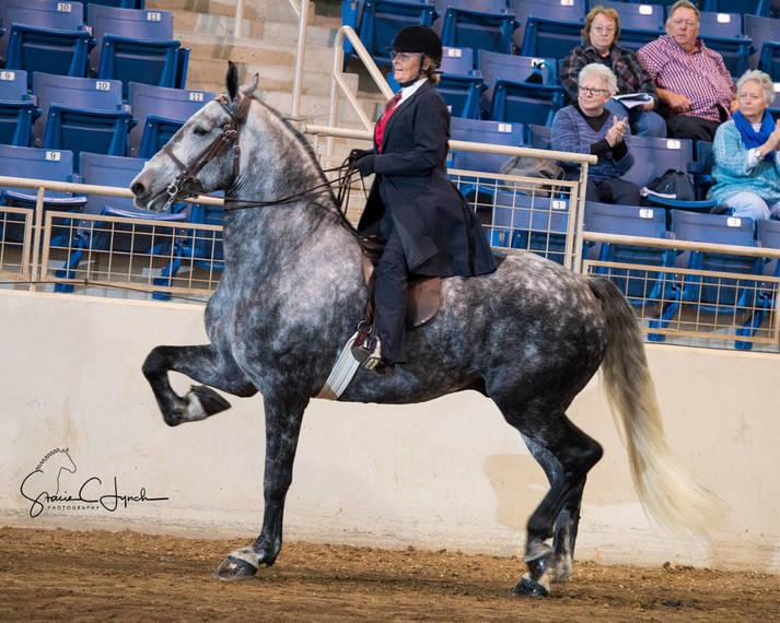 232a51042ef27b70ee63_Keystone_International_Draft_Horses185.JPG