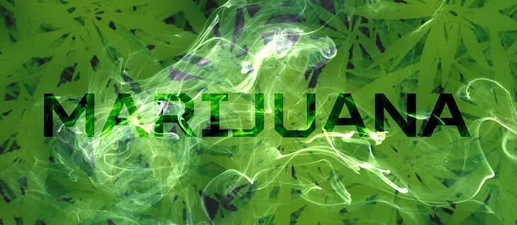 23d1e565dc6bfbe5fd1a_marijuana-1915024_1280.jpg