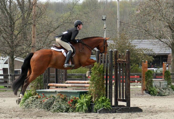 26495eb9ba150419b187_Garden_Stat79e_Horse_Show_18_By_Lillian_Shupe.JPG