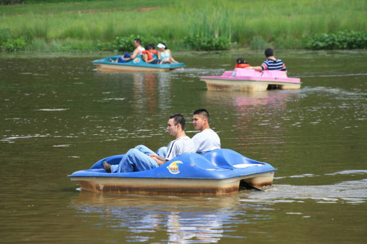 272549d8a686fa09d6bd_Paddle_Boats1.jpg
