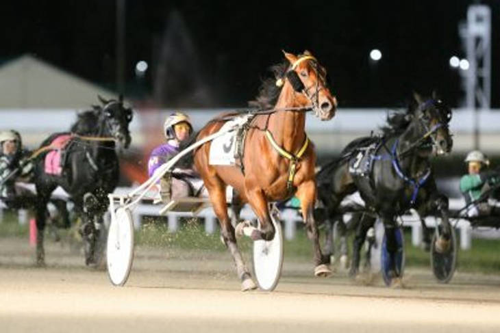 2815222a121df8f78967_Breeders_Crown_2017_Hoosier315.JPG