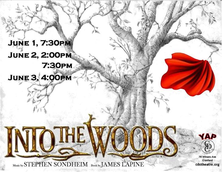 2c9ee997403a6e6f21bc_Into_the_Woods_flyer_2.1.jpg