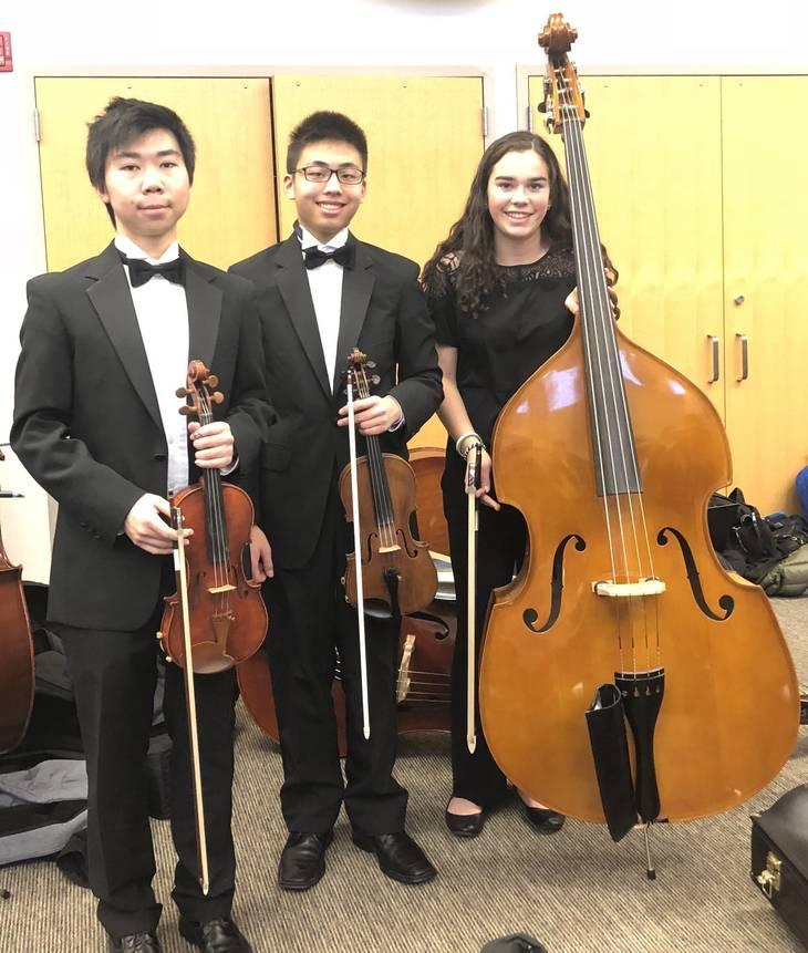 2fd58e34c300ea049313_WHS_orchestra_students_at_Jan_1_regional_concert.jpg