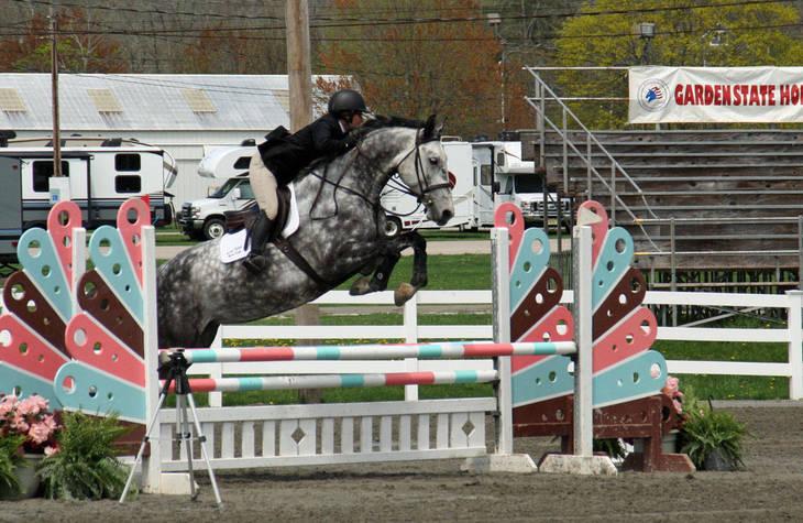 3246431cf7f9e76f3ab3_Garden_Stat97e_Horse_Show_18_By_Lillian_Shupe.JPG