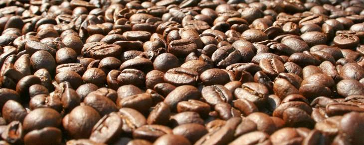 32771bd6da813a374d71_Coffee_Beans.jpg
