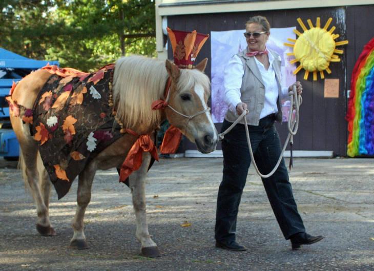 3597cf54728f21a72076_team_velvet_costume_show028.JPG